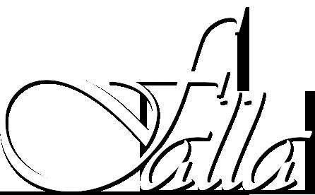 Falla reef trips logo